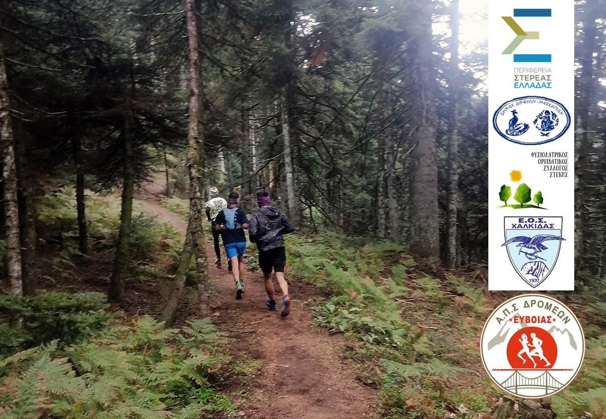 Dirfys Trail Run
